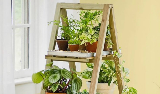 Elect the best vintage furniture for your indoor plants-5 vintage furniture Elect the best vintage furniture for your indoor plants feat22