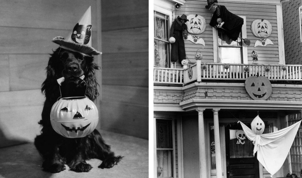The Scariest Halloween Decoration Ideas For Your Vintage Home! halloween decoration ideas The Scariest Halloween Decoration Ideas For Your Vintage Home! The Scariest Halloween Decoration Ideas For Your Vintage Home